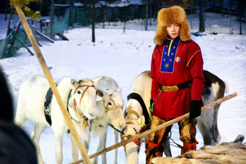 Tour to Sami village Murmansk winter